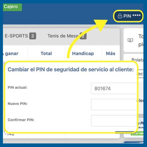 PC-PIN02.jpg